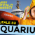Video – Aquarius e le 5 bufale