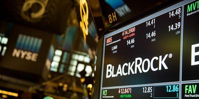 BLACKROCK: LA BURATTINAIA DELLE BANCHE. VIDEO VERITA'