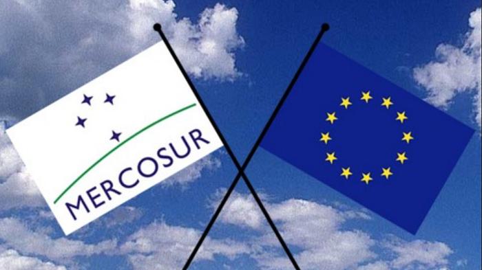 Qualcuno fermerà il l'accordo UE MERCOSUR (Bellanova, guarda ed impara!!)