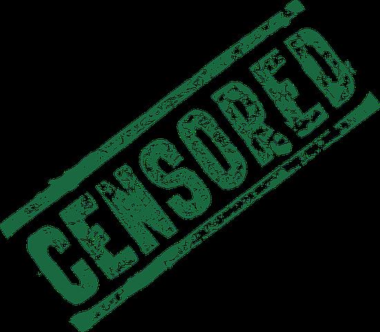 La Commissione Segre e l'insostenibile leggerezza della libertà d'espressione