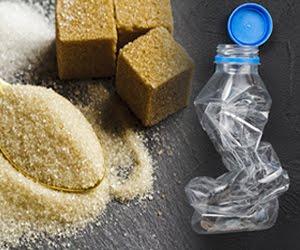 Plastic-Tax e Sugar-Tax. Il governo giallo-rosso sta distruggendo un intero settore produttivo. Ci saranno licenziamenti. I cittadini dell'Emilia-Romagna possono a gennaio fermare questo scempio (di P. Becchi e G. Palma)