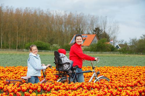 NIENTE SOLDI PER L'EUROPA MERIDIONALE: il motto degli olandesi, nostri compagni di sventura in Europa. E non hanno neppure torto