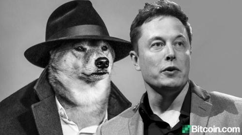 Elon Musk è il più grande speculatore di DogEcoin?