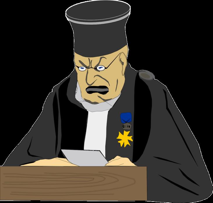 Le sentenze si devono rispettare, ma si possono criticare: lo dice la Corte europea dei diritti dell'uomo
