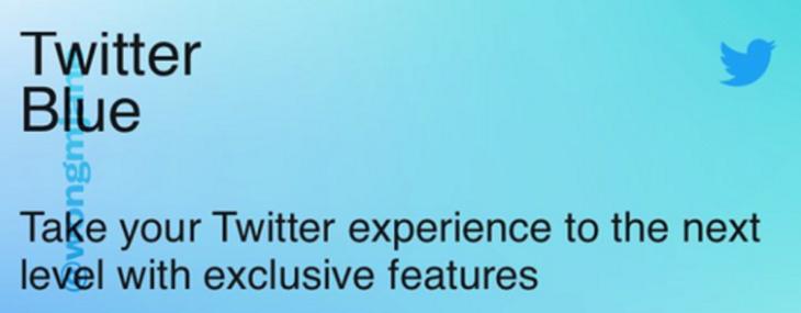 Pagherete pure Twitter (lasciare libertà sarebbe stato troppo facile…)