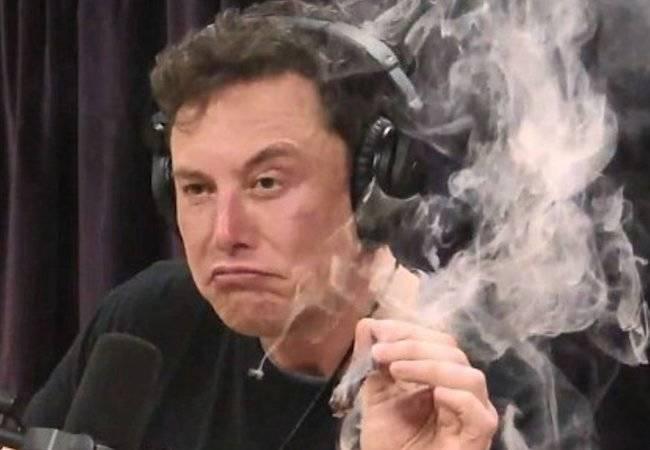 Musk lo fa di nuovo: DogEcoin al posto di Bitcoin. Incredibile che nessuno dica nulla