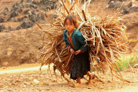 Sfruttamento del lavoro dei minori: una battaglia persa, soprattutto in Africa