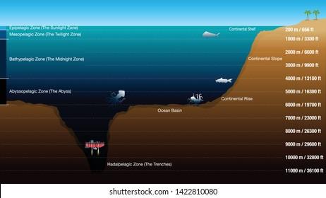 La CO2 sul fondo dell'oceano. E chi se ne importa se è un bene o no