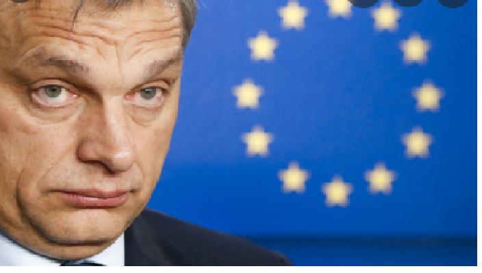 """La verità sulla legge ungherese """"Contro gli LGBT"""". Il testo originale, in italiano. GIUDICATE VOI"""