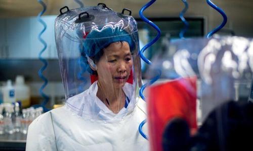 """""""I pipistrelli hanno i virus con il corredo genetico per una nuova SARS"""", dicevano a Wuhan nel 2017.."""