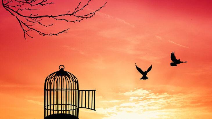 Restrizioni alle libertà personali, chi ci salverà stavolta?